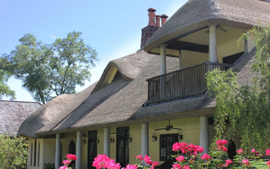 Get A Thatched Roof With No Worries Over Pest Infestation