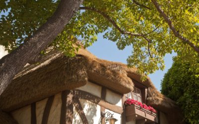 Architects Gain Freedom To Design Tudor-Style Structures With Somerset Thatch