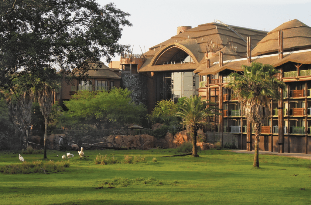 Animal-kingdom-lodge-capetown-4-1024x676