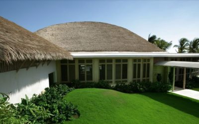 Artificial Thatch With A 20-Year Warranty