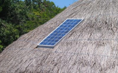 Choosing Thatch Roof Ambiance While Following California Solar Power Law