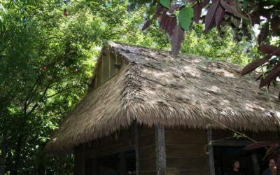 Get A Beautiful Thatched Roof Without The Insurance Hassles