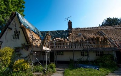 Insurance Company Cautions About Dangers Of Natural Thatched Roofs