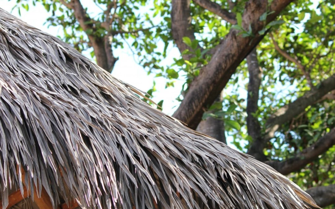 Endureed's Synthetic Thatch Roofs Eliminate The Hassle Of Pests