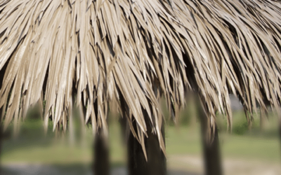 Why Thatch Tiki Huts Are A Better Shade Option For Patrons Than Umbrellas