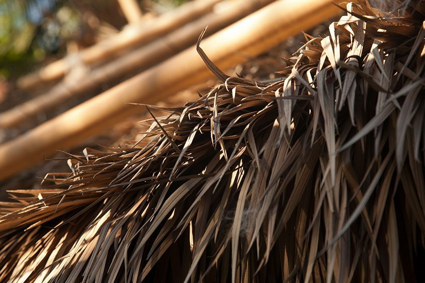 avoid pests common with natural thatch