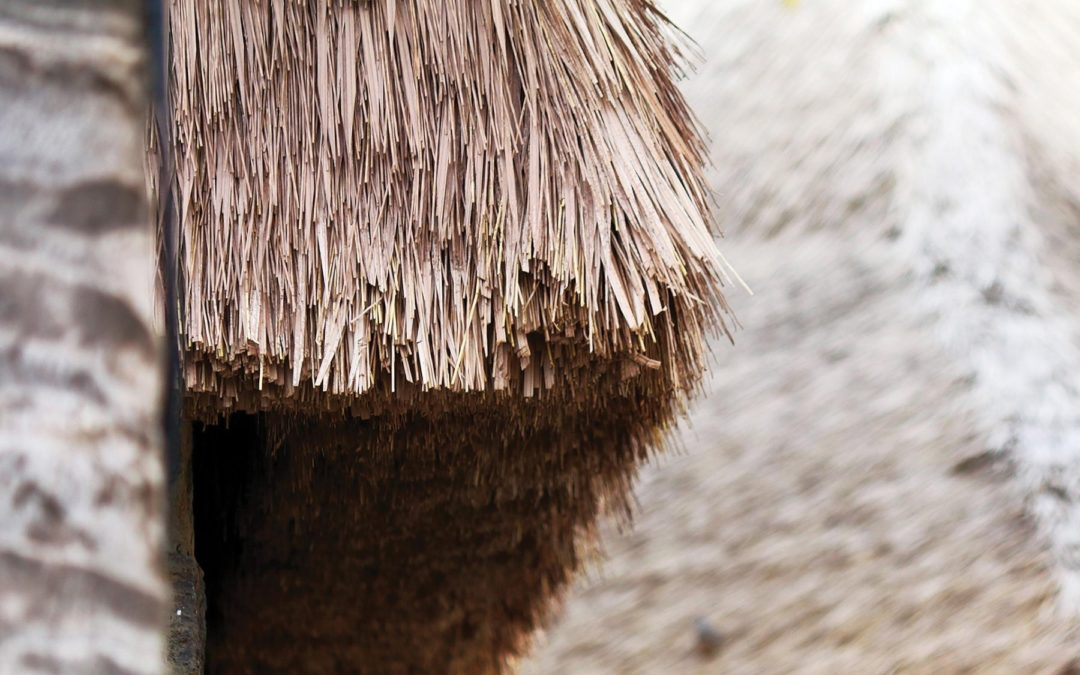 Avoid Mice And Rats In Your Thatch Roof With Synthetic Thatching By Endureed