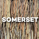 Somerset-icon-150x150