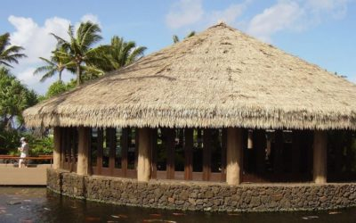 Why Choose Endureed Synthetic Thatch?